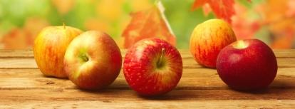 1409759322_fall-apples-on-a-table_facebk.jpg